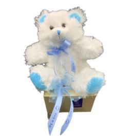Σύνθεση δώρου για νεογέννητα – SNB9